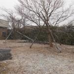 仙台市泉区:雪が降ってきました